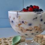 Granola parfait - red granole, red jogurta, red voća